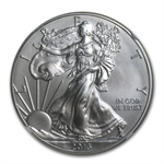 2013-W Burnished Silver Eagle - MS-70 NGC - Early Releases
